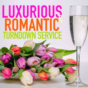 emptation Experience Online Shop | Luxurious & Romantic Turndown Service